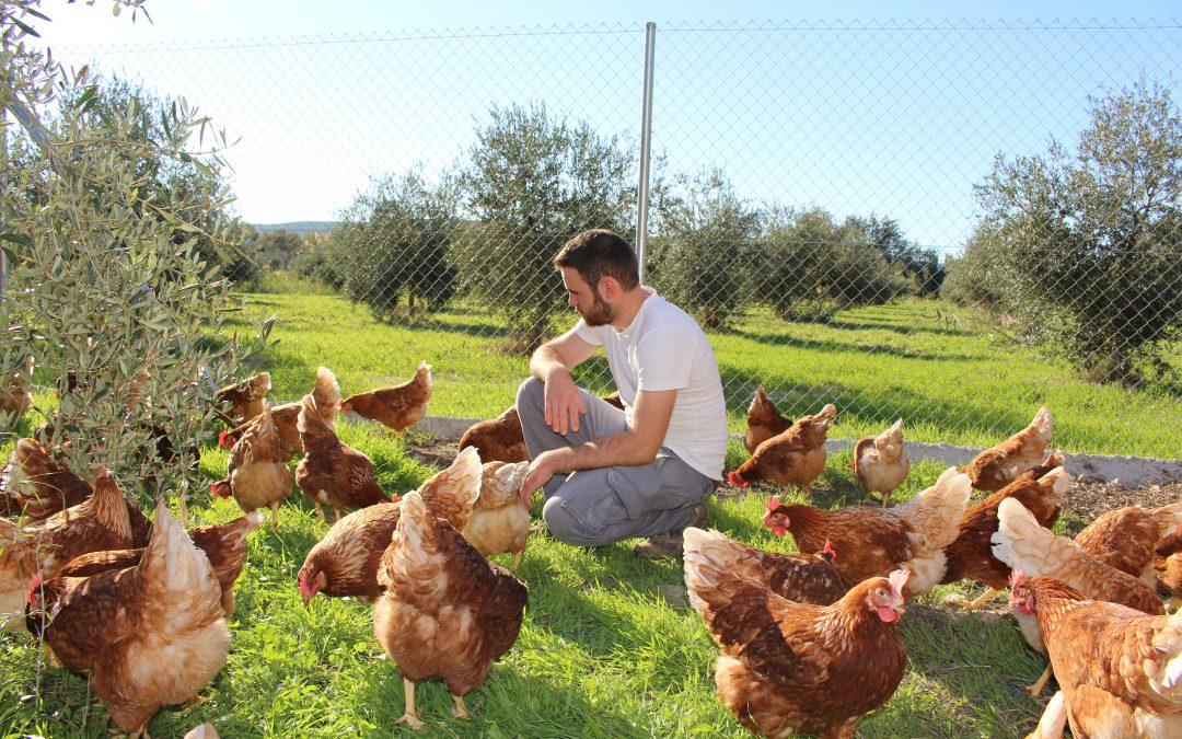 Nuestro proyecto de emprendimiento agrícola